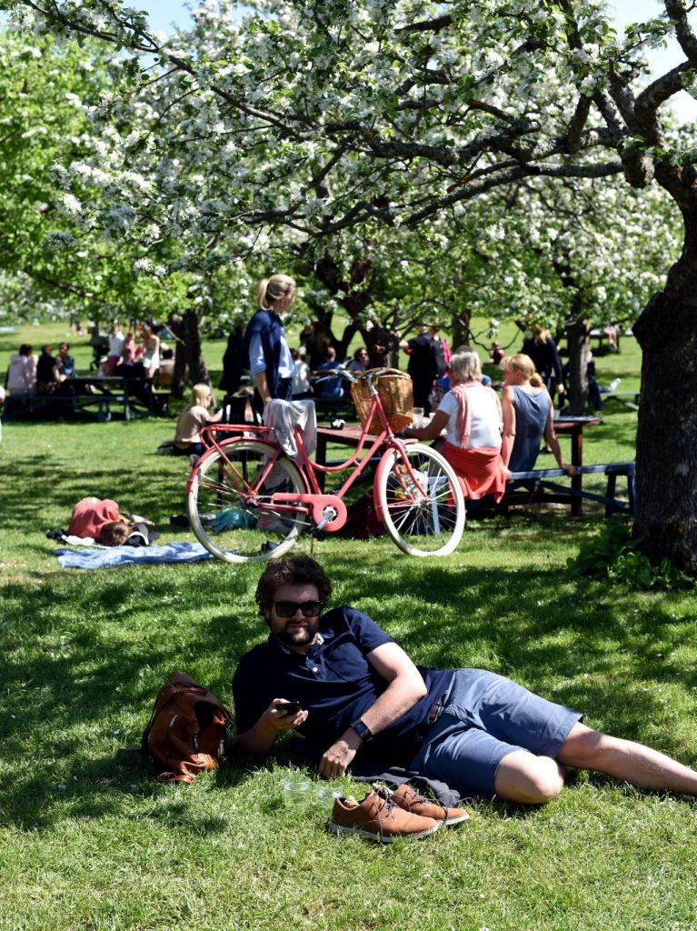 Mat, drikke og aktiviteter i Stockholm