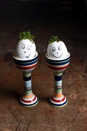 Så karse i eggeskall